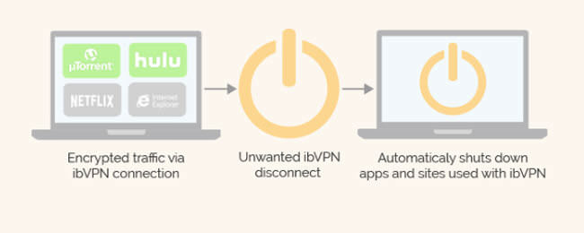 ibvpn features
