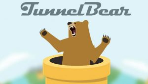 TunnelBear Introduces VPN Service For Teams