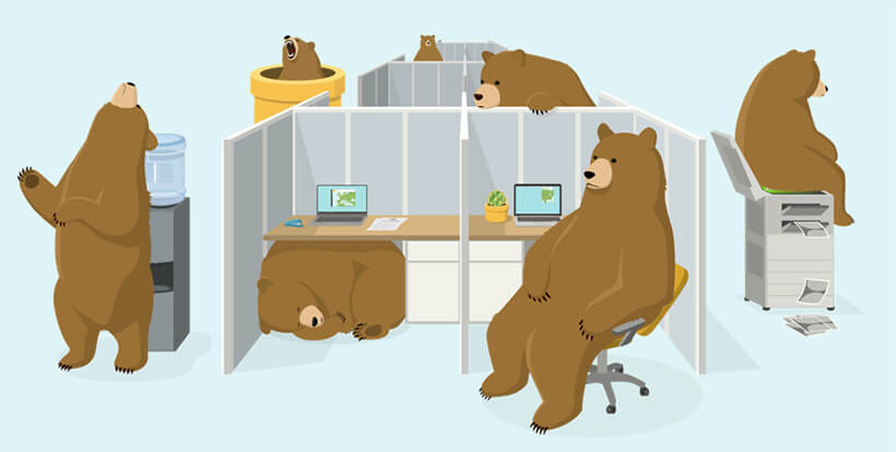TunnelBear Introduces VPN Service