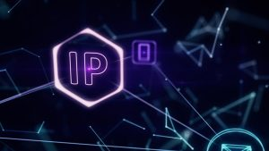 BTGuard does not collect IP