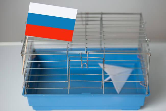 Russian Roskomnadzor Plans To Block All VPNs