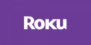 best vpns for roku